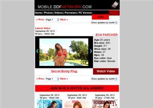Mobile DDF Network